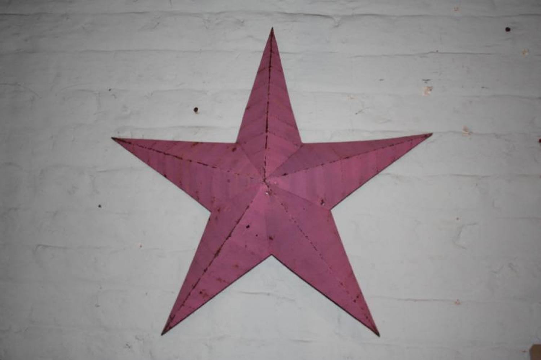 Pink Metal Star