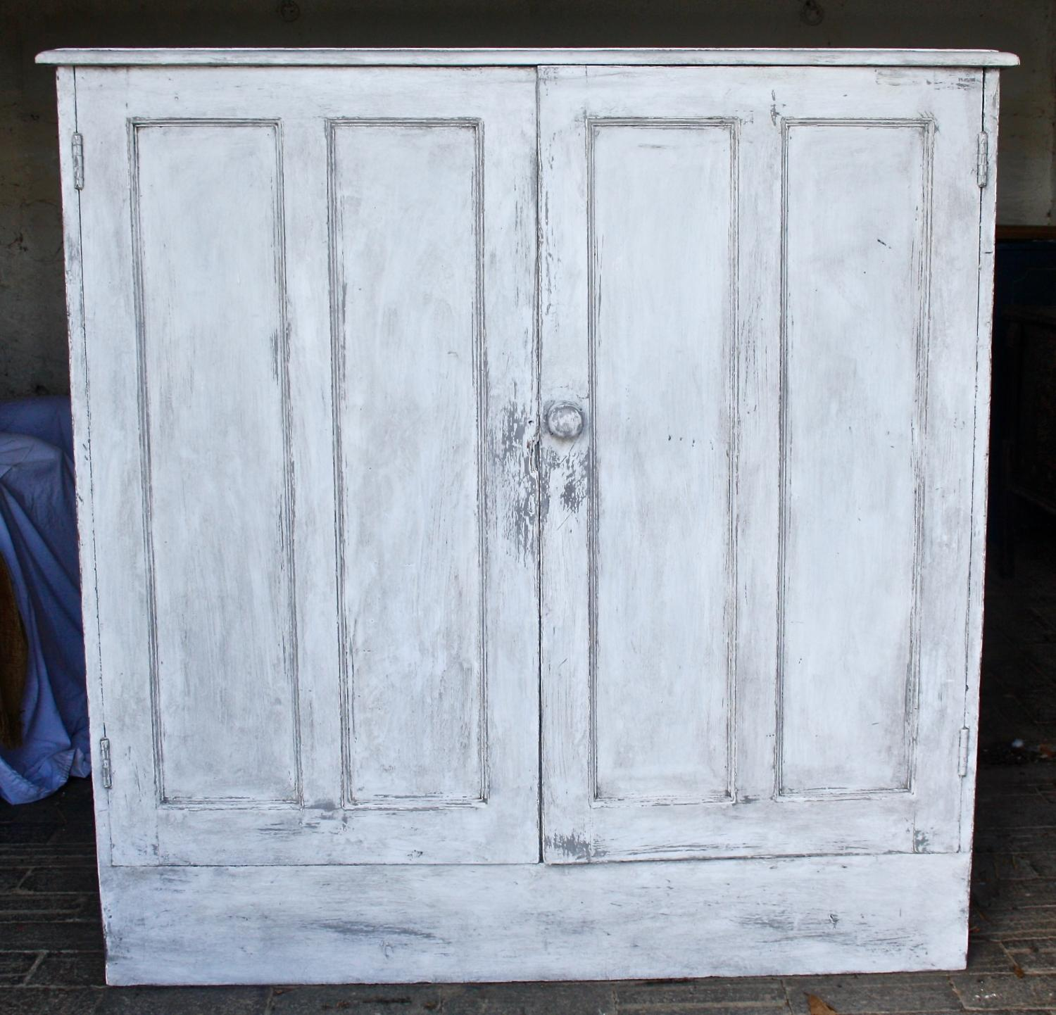 19th Century Painted Shelved Cupboard