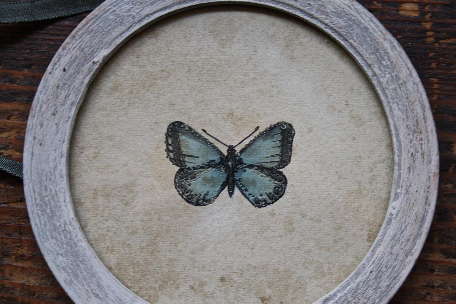 Butterfly watercolour in round frame