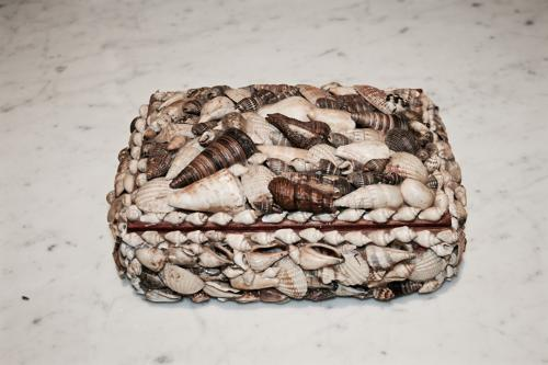 Decorative Shell Trinket Box