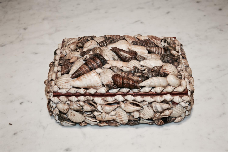 Decorative Shell Trinket Box