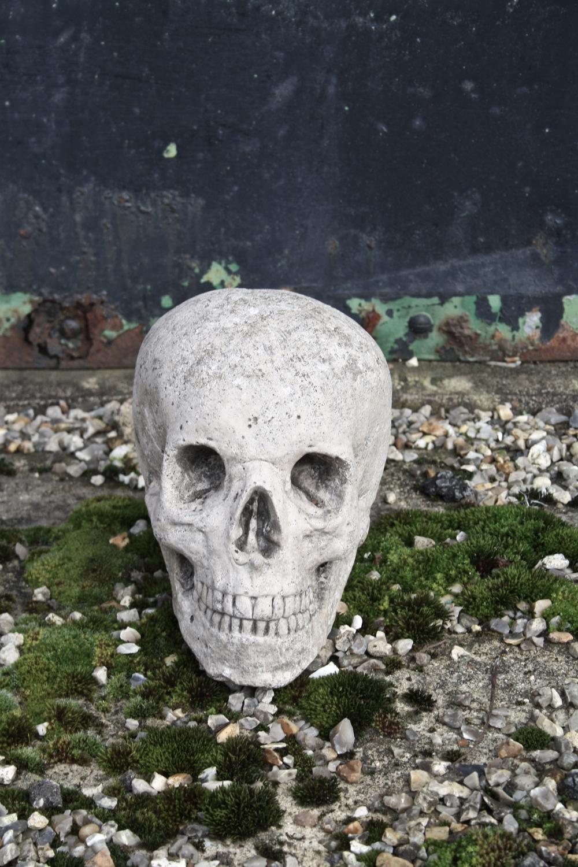 Reconstituted stone skull