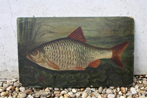 19th century oil painting of fish