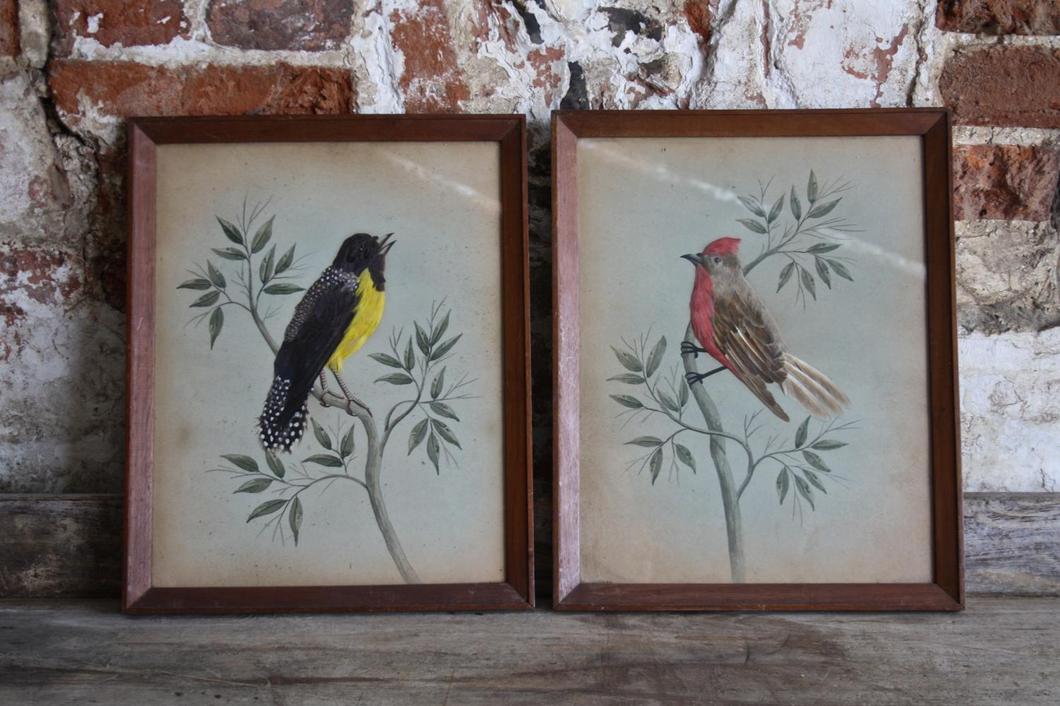 Pair of early 1900s feather pictures