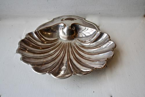 Large silver shell