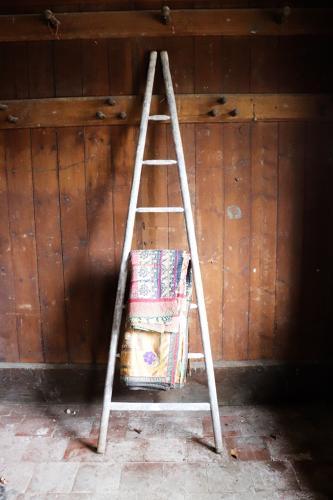 Vintage French orchard ladder