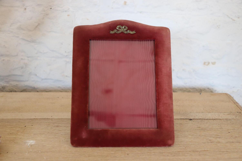 Vintage velvet frames