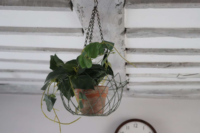 Early 19th century wirework plantpot holder