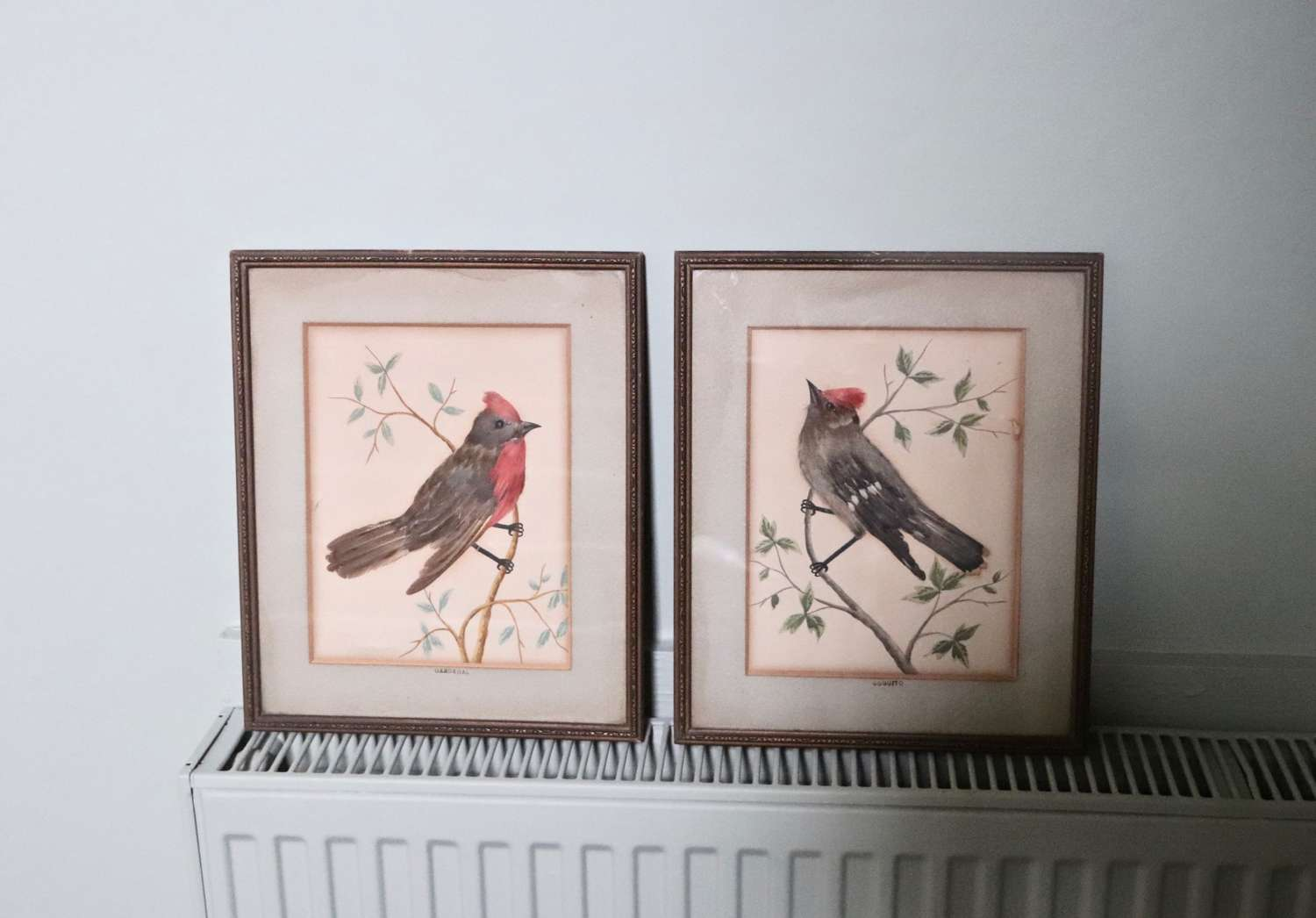 Pair of feather pictures