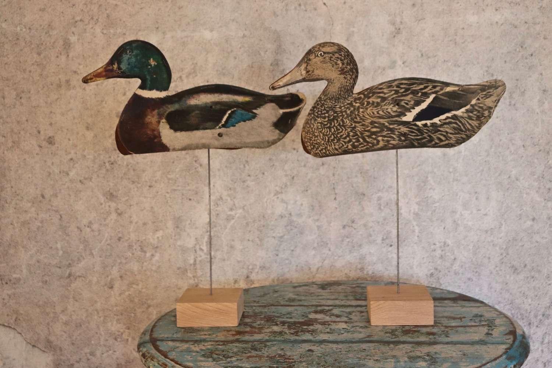 Pair of decorative decoy ducks on modern stands