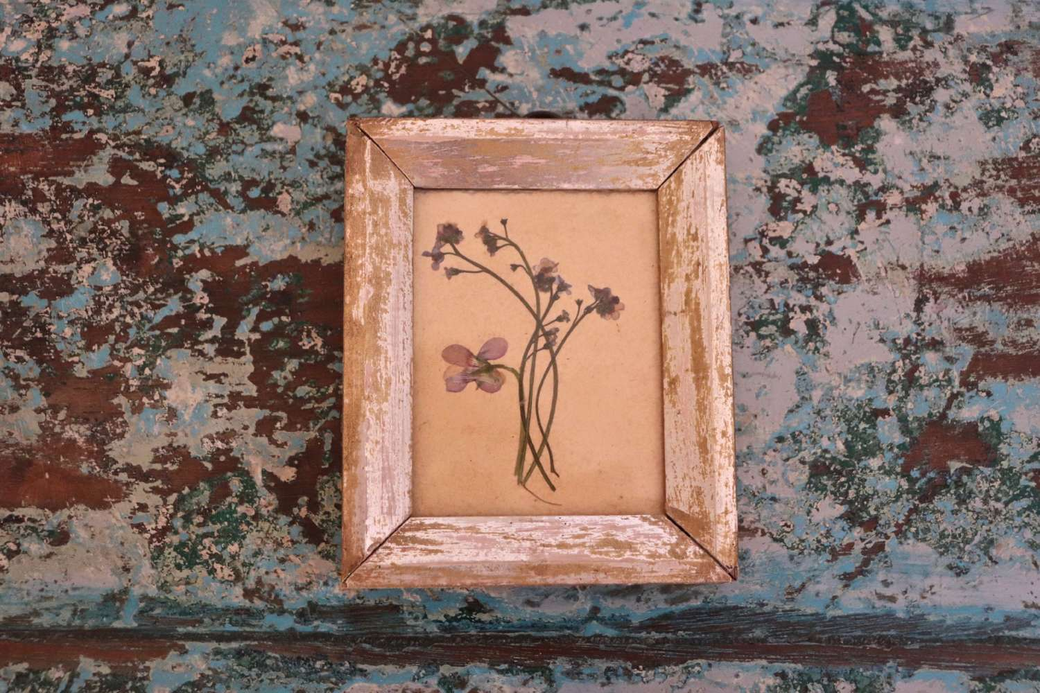 Dried flowers in antique frame