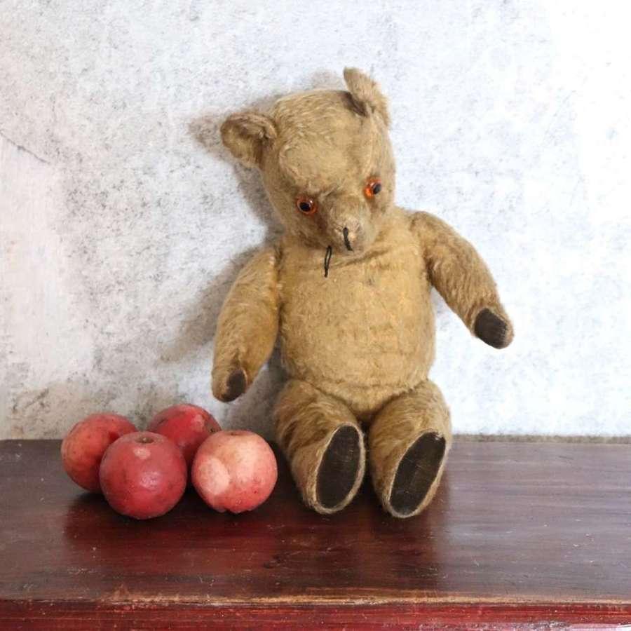 1950s teddy bear